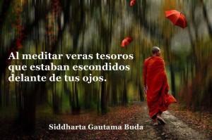 el_tesoro_de_meditar_cristobal_amo