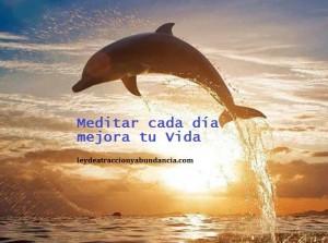 delfin que medita