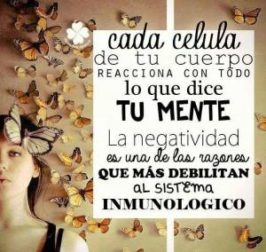 alinear_cuerpo_mente_saama_cristobal_amo