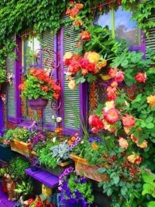 flores_y_amor