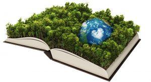 ecologia_en_la_informacion